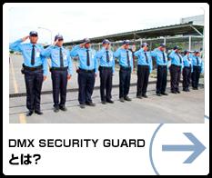 DMX GUARD とは?