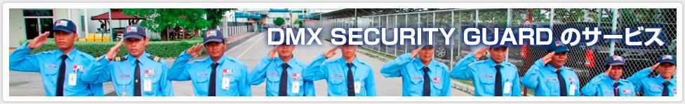 DMX GUARD のサービス