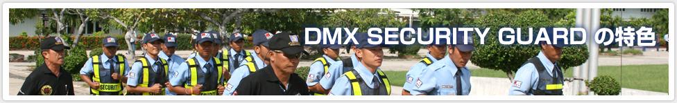 DMXの特色